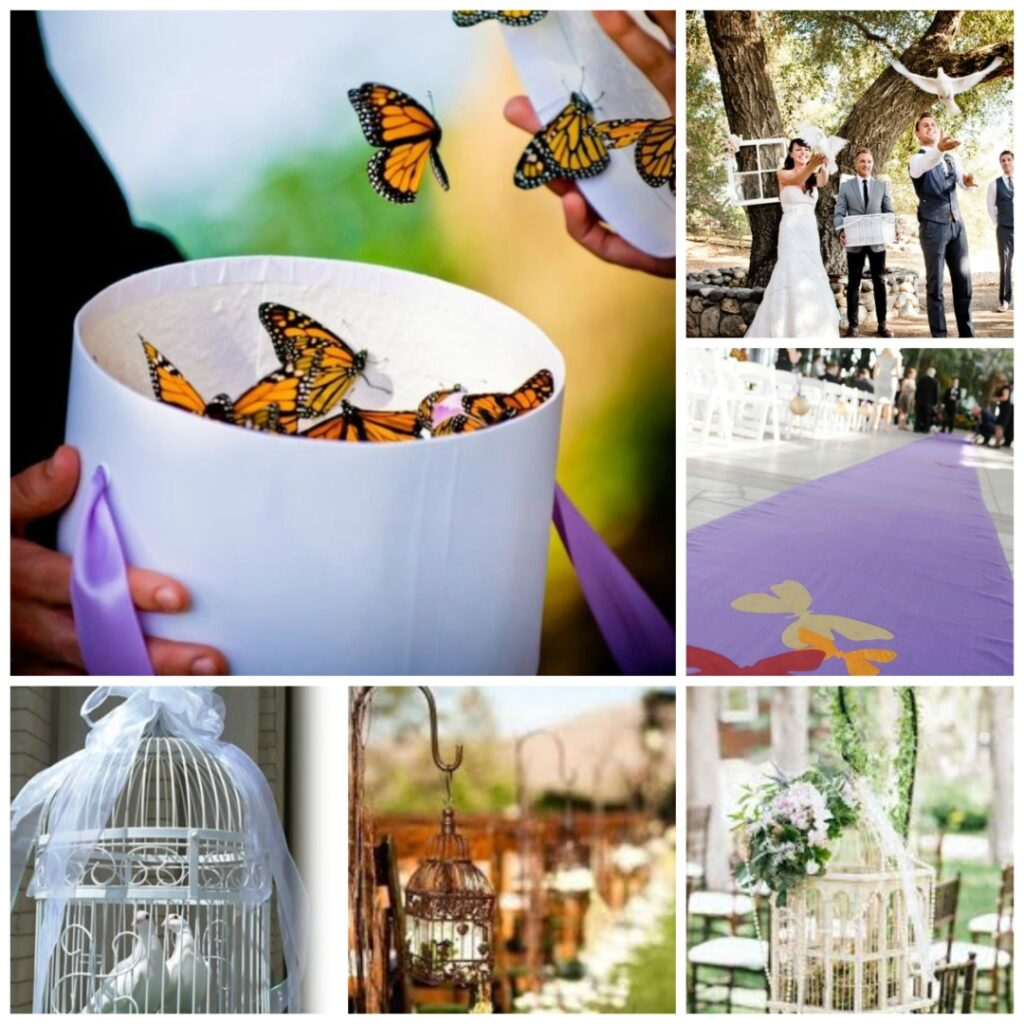 Birds And Butterflies Wedding Theme Perfect Details