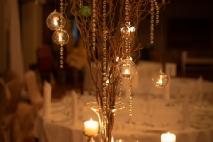 Branches_and_candles_hanging