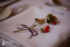 Berry_napkin